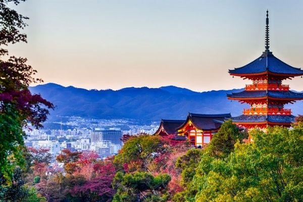 京都の男性にはストレートに思いを伝えよう